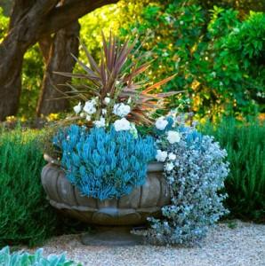 grace-design-urn-blue-plantings1